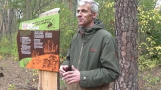 Четвёртый межрегиональный фестиваль экологического туризма «Тропами доверия»