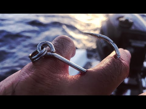 This Is Going To Hurt... BIG Hook Up! How To Remove A Massive Fishing Hook.