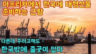 """아프리카에서 한국에 대형선물 준비하는 근황 """"한국만 받을수 있는 선물"""""""