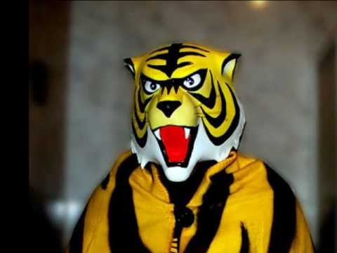 Carnevale di venezia uomo tigre youtube for Immagini tigre da colorare