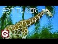 SOFI TUKKER FEAT BETTA LEMME Awoo mp3