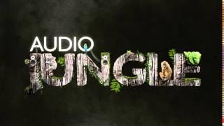 Music - Africa Worldbeat Pop 1 | AudioJungle