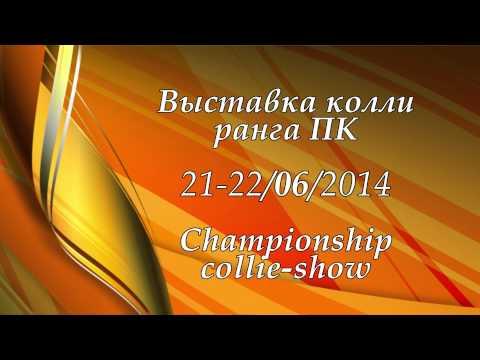 Выставка моно колли (ПК) в Санкт-Петербурге, 21-22.06.2014