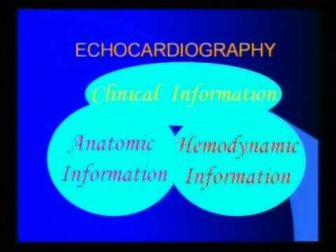 35th course  18 03 2017  Basics in Doppler Echocardiography Dr S K Parashar