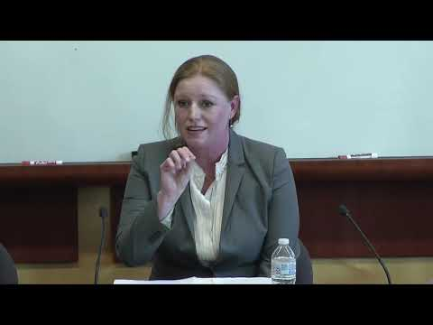 Guns And Domestic Violence: U.S. & International Human Rights Law Perspectives