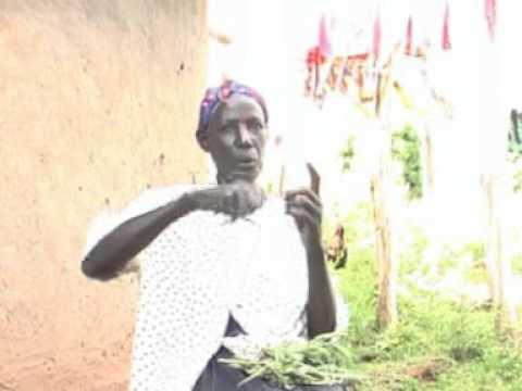 Kasongo Polo Menyo Video