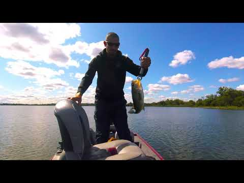NORTHERN PIKE AND LARGE MOUTH BASS FISHING AT WOLF LAKE