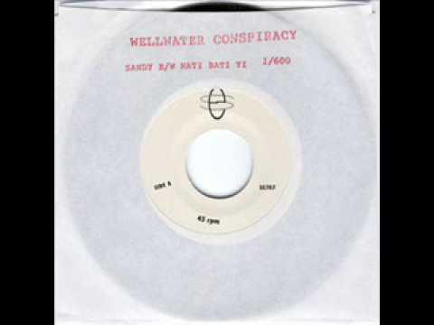 Wellwater Conspiracy - Sandy mp3