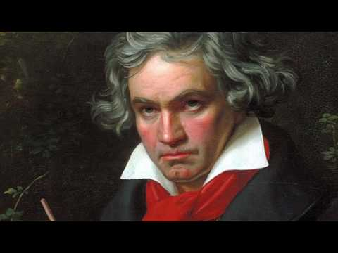 Beethoven Symphony No. 9  -  Froh, Froh wie seine Sonnen