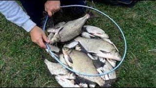 Делаем прикормку для Леща Ловля леща на поплавок Рыбалка на реке
