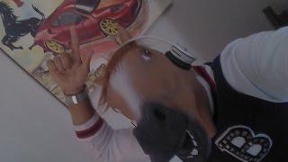 [#73] Unboxing Aliexpress Mascara de cavalo