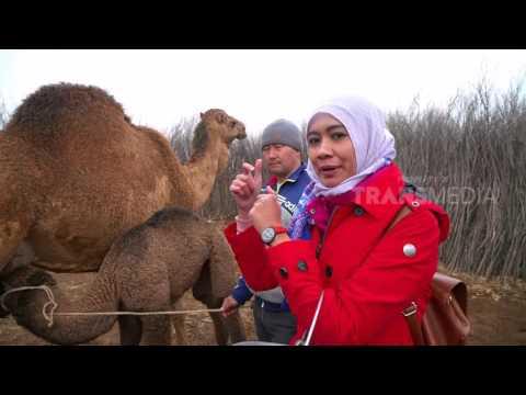 JAZIRAH ISLAM - TURKISTAN PERMATA KAZAKHSTAN (16/6/17) 3-2