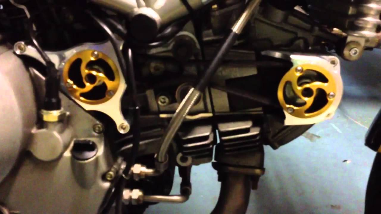 Ducati Monster  Timing Belt