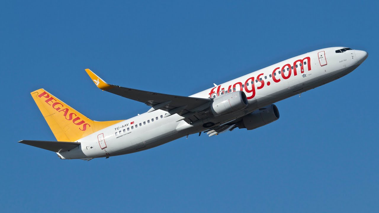 Image result for Pegasus Airlines