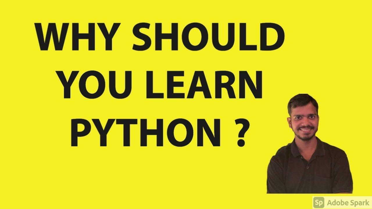 работа программист python удаленно
