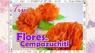 Dia de muertos - Flores de Cempazuchitl - DIY