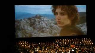 The Lord of the Rings in Concert: Gandalf Falls