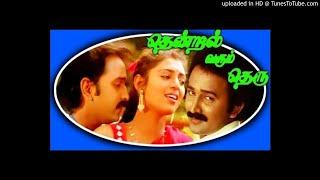 Pudhiya Paravai Paranthathe Thendral Varum Theru 1994.mp3