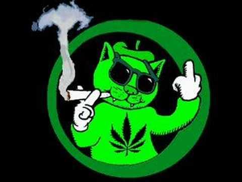 cuz i got high