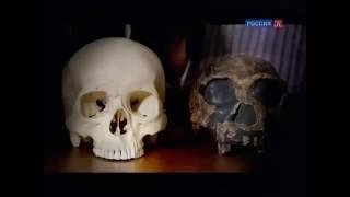 BBC Планета первобытных людей: Человек прямоходящий против челов / 1 серия