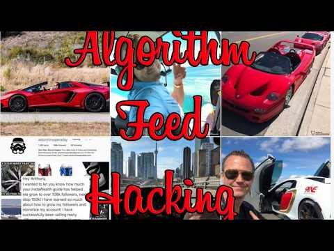 Hacking Instagram Algorithm Feed To Get More Likes