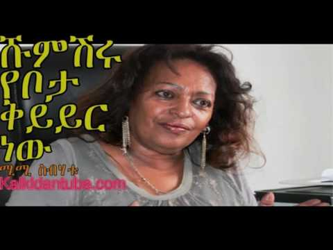 Zami Radio - Mimi Sebhatu live phone conversation with public