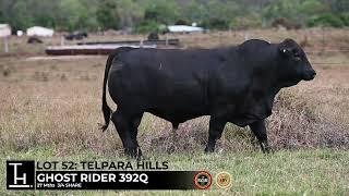 Lot 52 - Telpara Hills GHOST RIDER 392Q