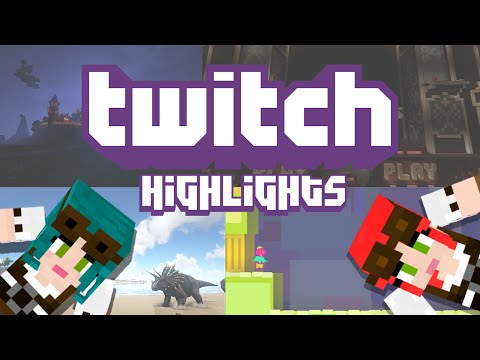 Twitch Highlight! Pixel Painters (AKA Misconduct Wins the Internet)