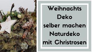 Weihnachtsdeko Idee - Christrosen Deko mit Flechtenästen - DIY Deko Idee zum  selber machen