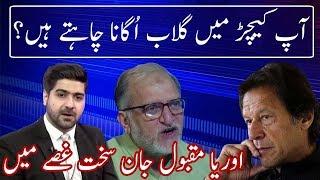 Orya Maqbool Jaan Bashing Pakistan Political System   Sawal to Hoga