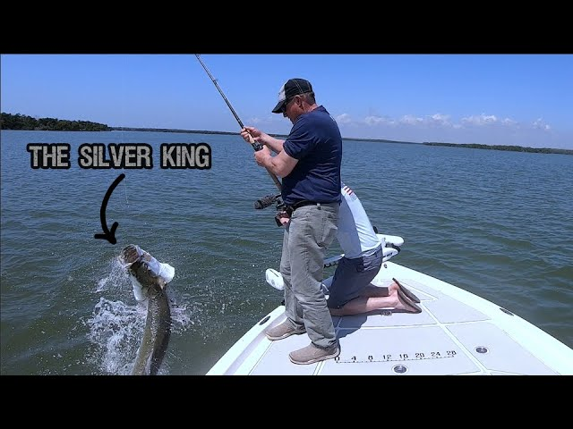 INSANE Tarpon Fishing!!!