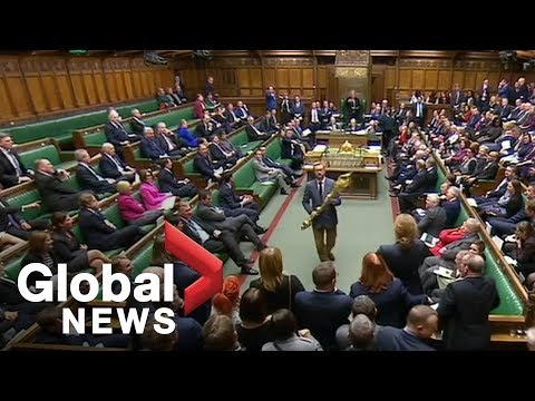 Brexit: British MP seizes mace, tossed from parliament