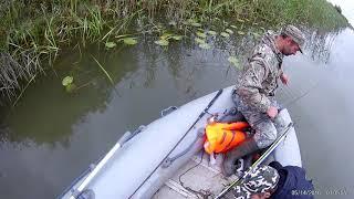 Ловля окуня в протоке 2