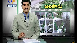 ETV Special Story On Hydroponix - A New Technology Used In Agriculture