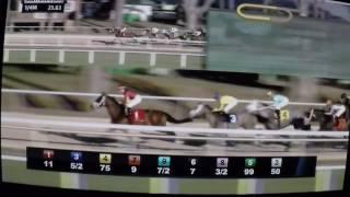 2017 Sam F.Davis Stakes McCracken