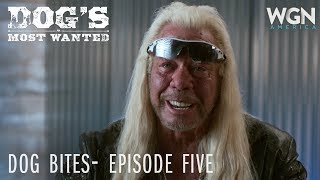 Dog's Most Wanted | Dog Bites: Episode Five | WGN America