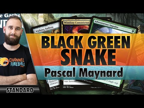 Black-Green Snakes - Standard | Channel Pascal