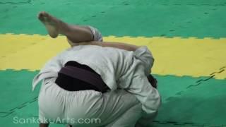 Repeat youtube video Women's Brazilian Jiu-Jitsu Triangle Submission