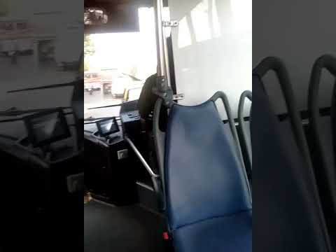 electric bus(1)