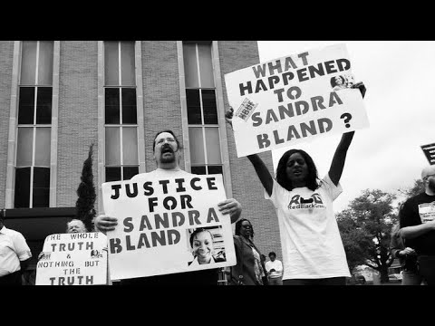 Hocus News. The Curious Case Of Sandra Bland & Black Lives Matter. Sandra Bland Cell Phone Video