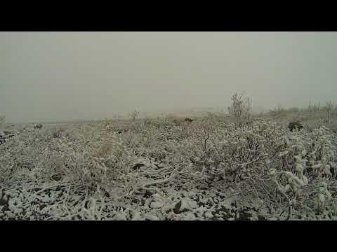 Phonography : Galbraith Lake, Artic Circle, Alaska (68.455052,-149.477811)