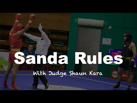 Sanda Competition - rules