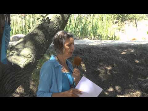 Judy Carman speech at Vegan Spirituality Retreat 2014 in Malibu