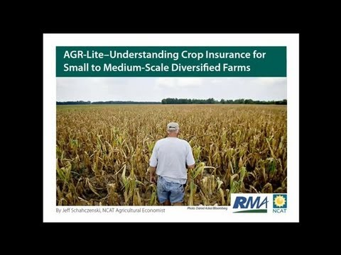 Understanding Crops Insurance Options for Small- to Medium-Scale Diversified Farms