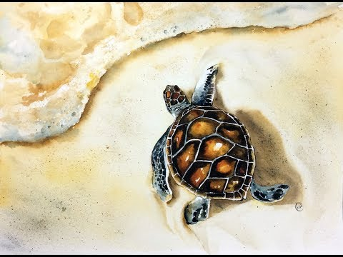 Watercolor Gold Turtle Painting Tutorial