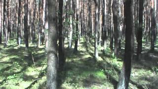 Las iglasty - maj 2012