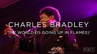 Charles Bradley:
