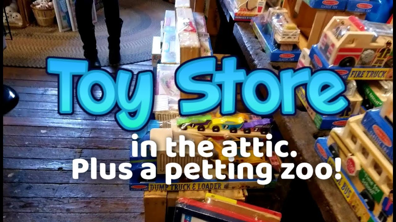 Toy Store In The Attic Plus A Petting Zoo Youtube
