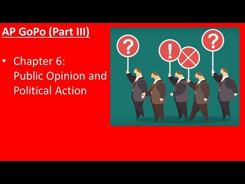 Ch. 6 - Public Opinion and Political Action