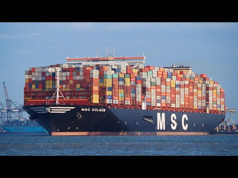 MSC GULSUN - New world's largest containership departing the port of felixstowe 7/9/19